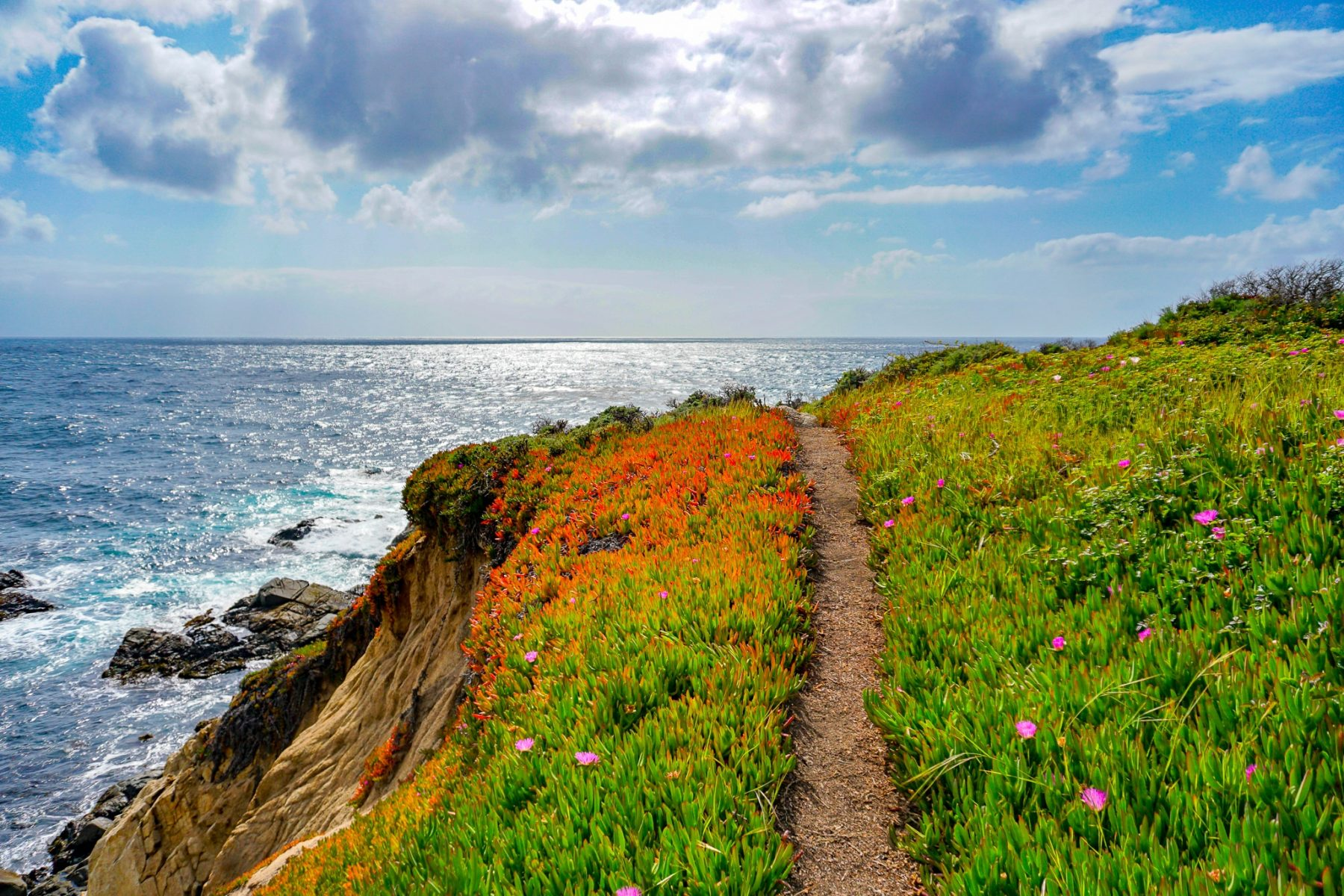 Southern California National Parks